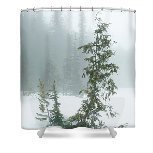 Trees In Fog Shower Curtain