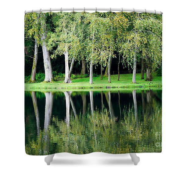 Trees Reflected In Water Shower Curtain