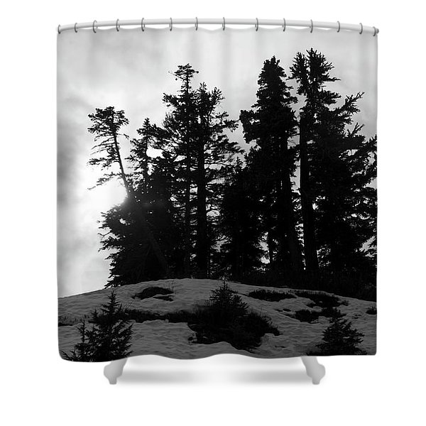 Trees Silhouettes Shower Curtain
