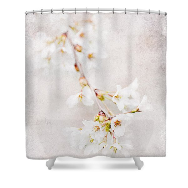 Triadelphia Cherry Blossoms Shower Curtain