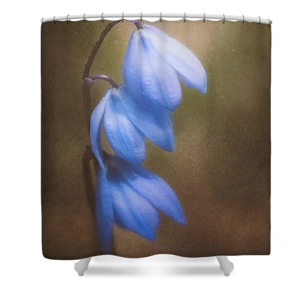 Trio Of Spring Flowers Shower Curtain