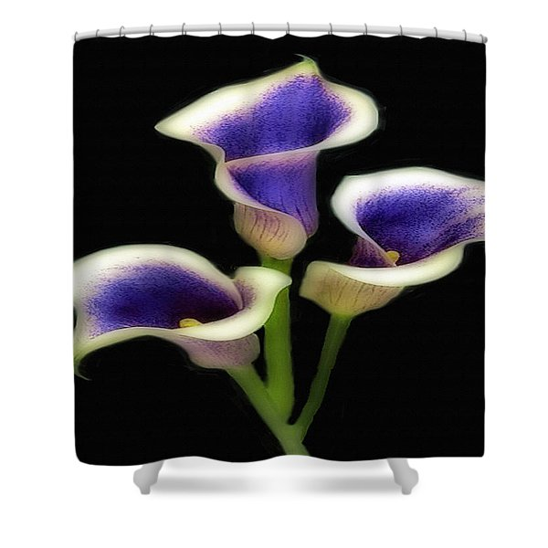 Triple Royal Floral Shower Curtain