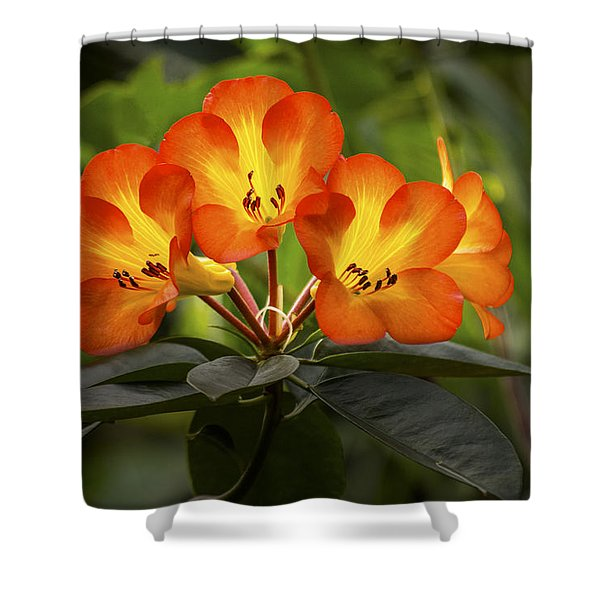 Tropical Rhododendron Shower Curtain