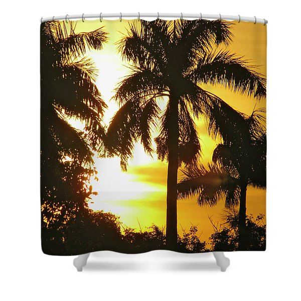 Tropical Sunset Palm Shower Curtain