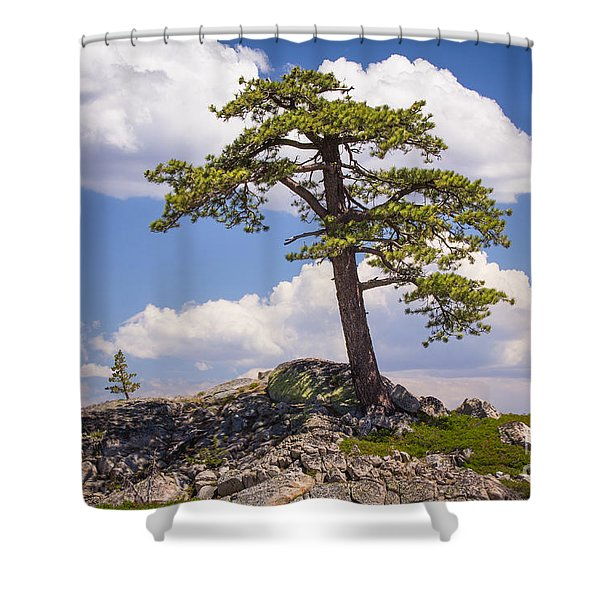 Truckee  Shower Curtain