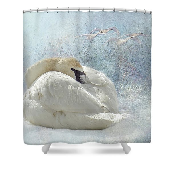 Trumpeter Textures #1 - Swan Feather Shower Curtain