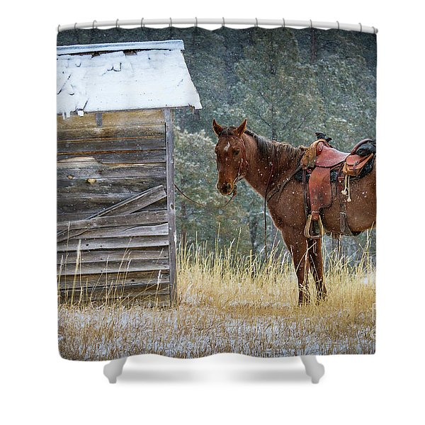 Trusty Horse  Shower Curtain