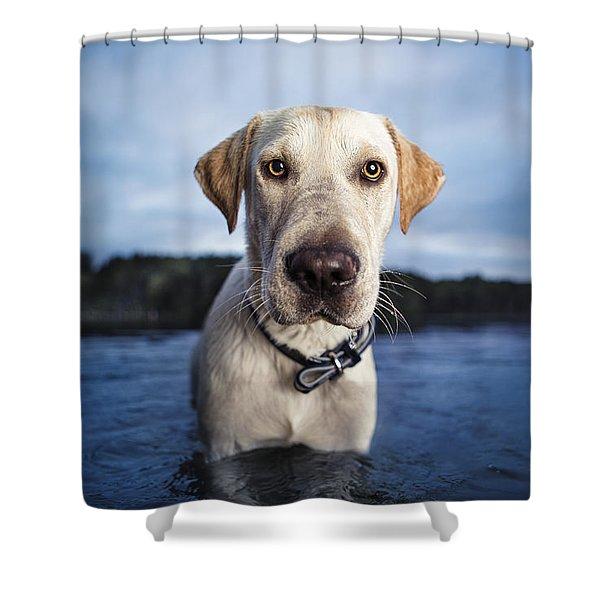 Tucker Shower Curtain