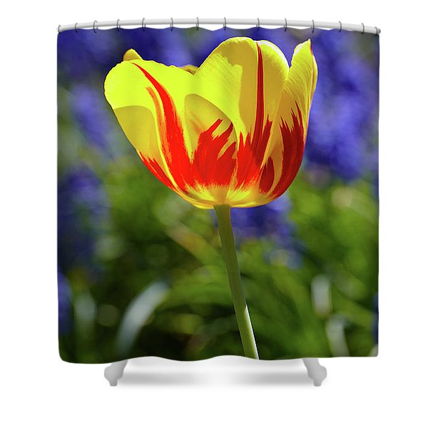 Tulip Flame Shower Curtain