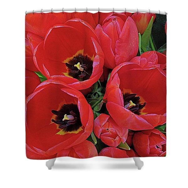 Tulip Parade Shower Curtain
