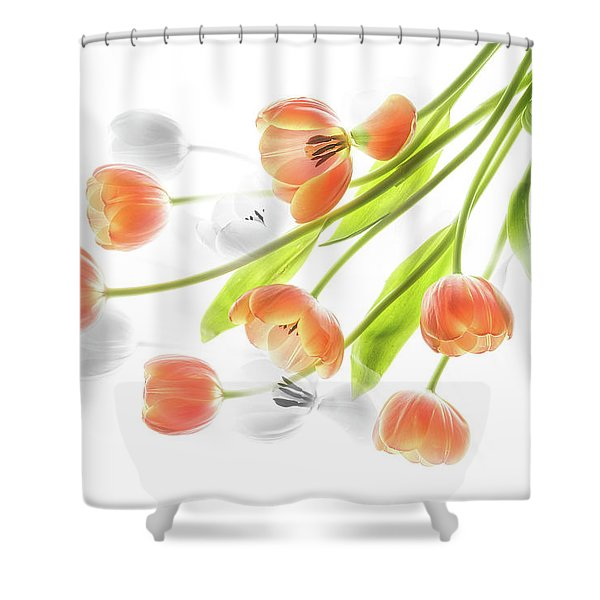 A Creative Presentation Of A Bouquet Of Tulips. Shower Curtain