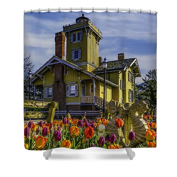 Tulips Af Hereford Light Shower Curtain