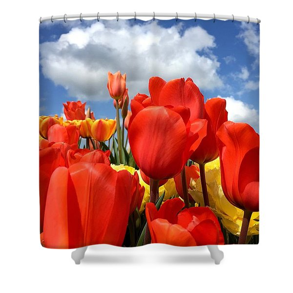 Tulips In The Sky Shower Curtain