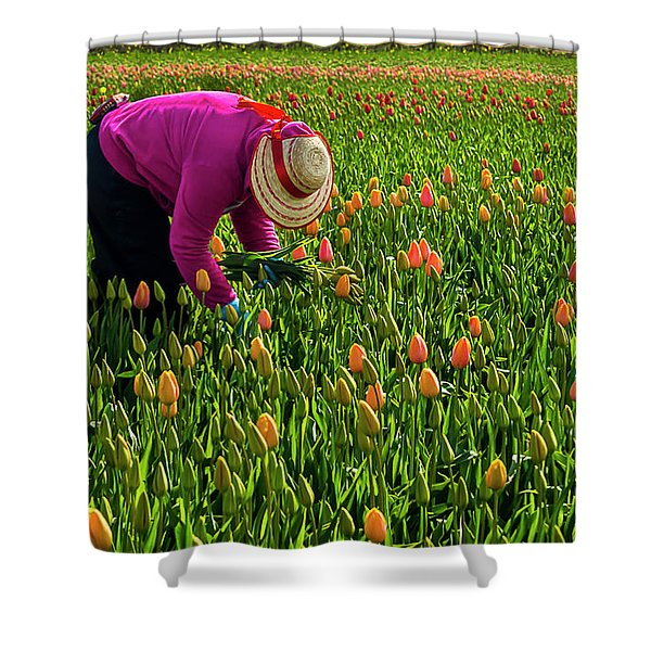 Tulips Picker Shower Curtain