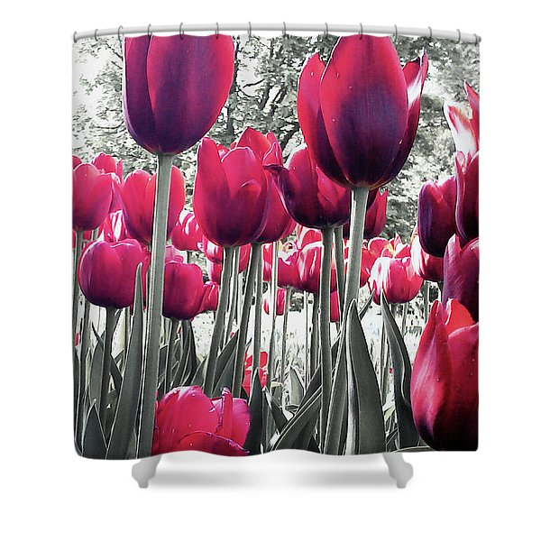 Tulips Tinted Shower Curtain