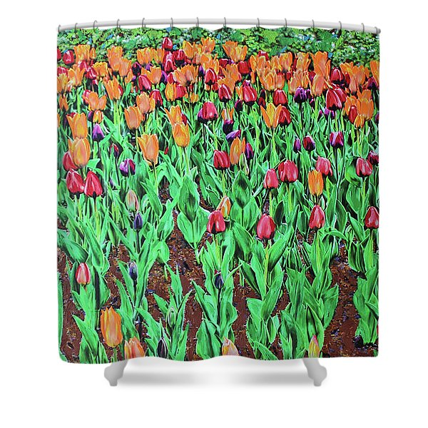 Tulips Tulips Everywhere Shower Curtain