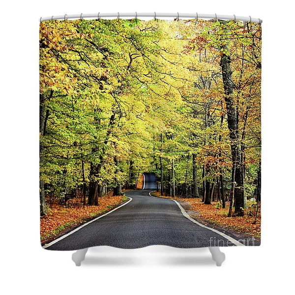 Tunnel Of Trees Shower Curtain