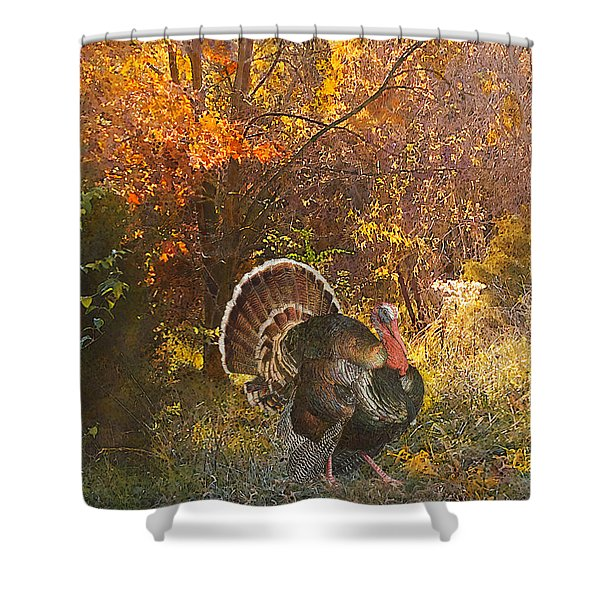 Turkey In The Woods Shower Curtain