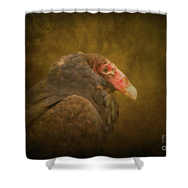 Turkey Vulture Shower Curtain