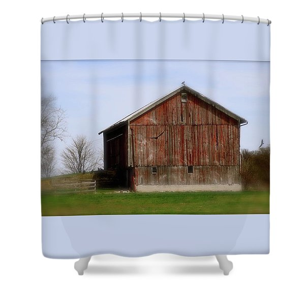 Turkey Vultures Hovering Around The Barn Shower Curtain