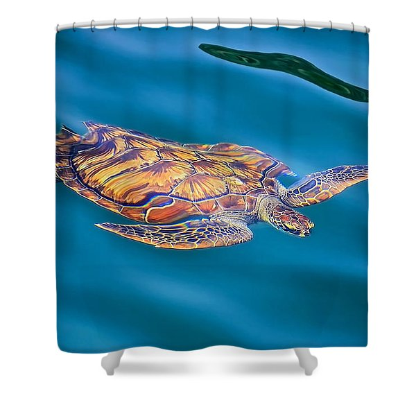 Turtle Up Shower Curtain