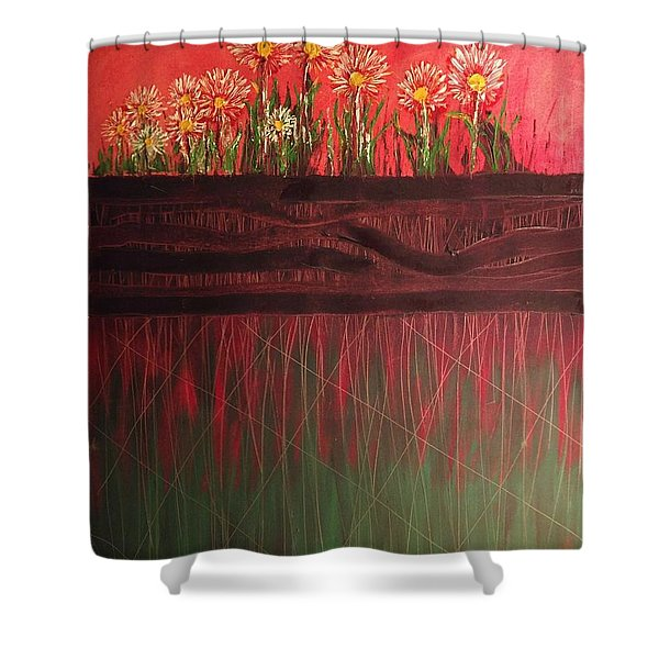 Twelve Daises In Window Box Shower Curtain