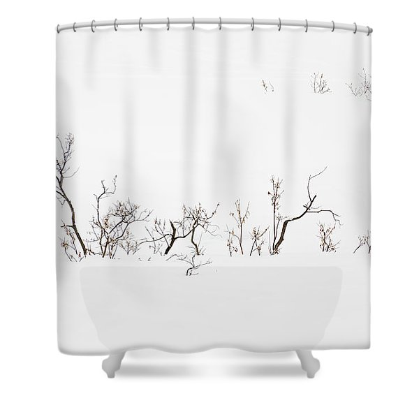 Twigs In Snow Shower Curtain