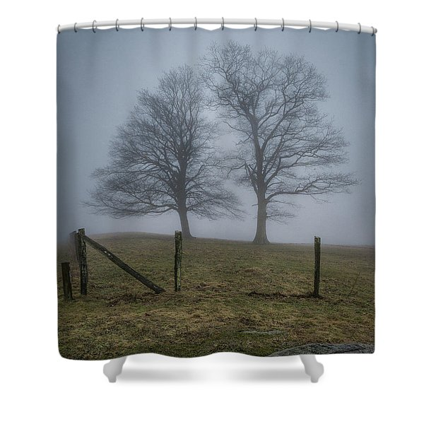 Twin Trees Late Fall Foggy Morning Shower Curtain
