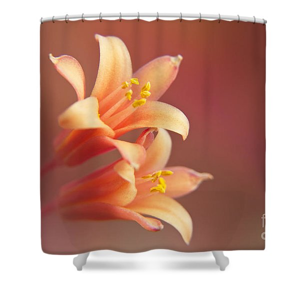 Twin Yucca Flowers Shower Curtain