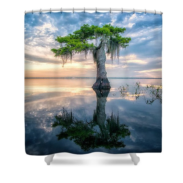 Twisted Cypress Mirror Shower Curtain
