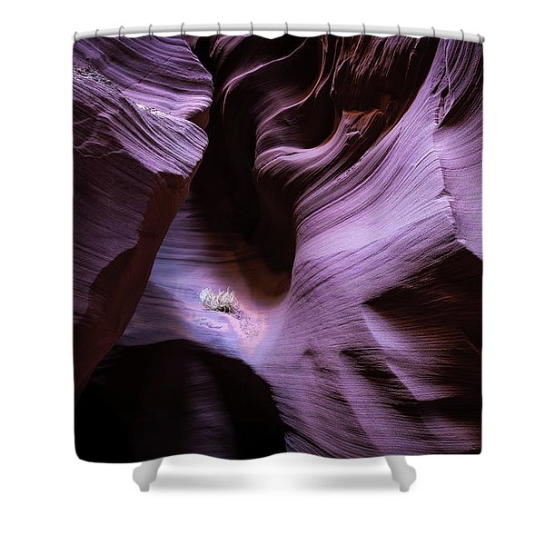 Twists And Turns II Shower Curtain