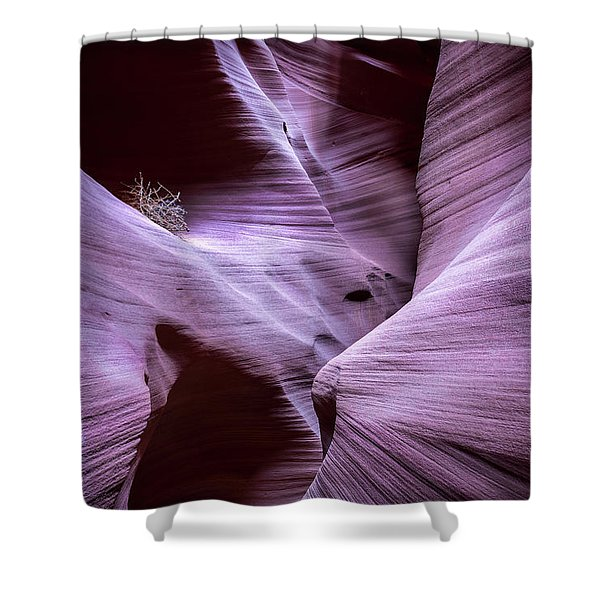 Twists And Turns Shower Curtain