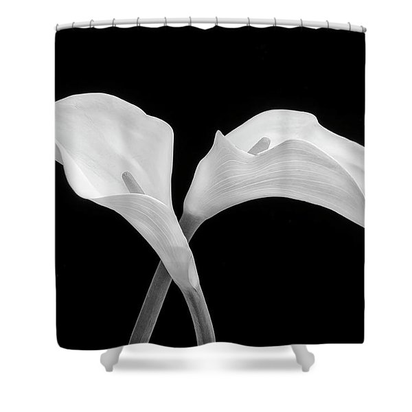Two Beautiful Calla Lilies Black And White Shower Curtain