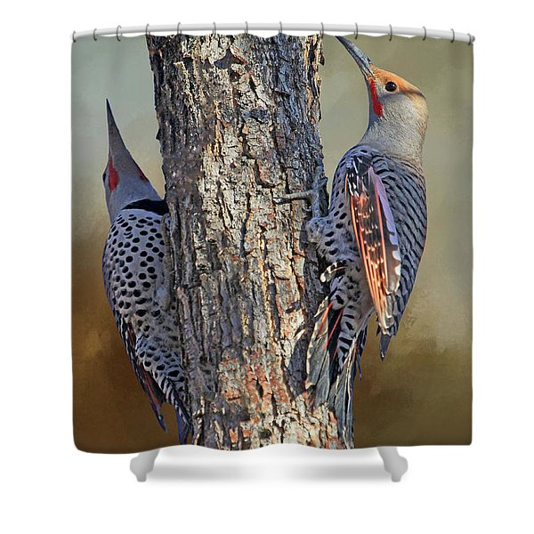 Two Flickers Shower Curtain
