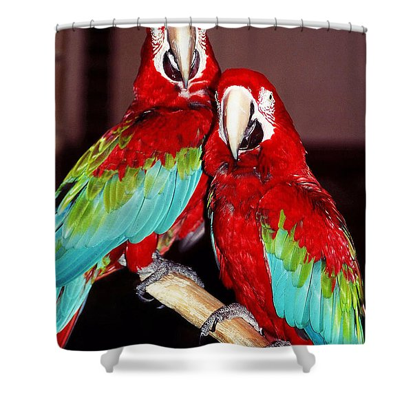 Two Friends ... Shower Curtain