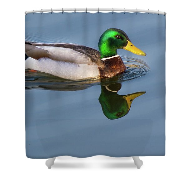 Two Headed Duck Shower Curtain