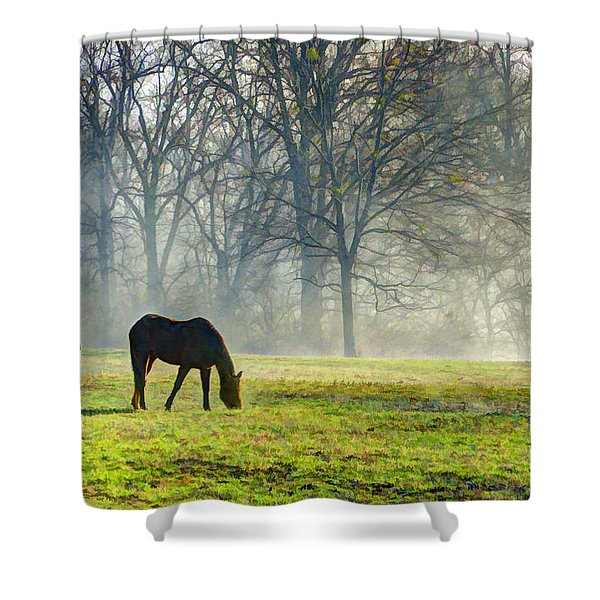 Two Horse Morning Shower Curtain