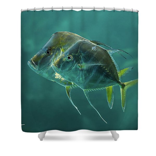 Two In Turquoise Shower Curtain