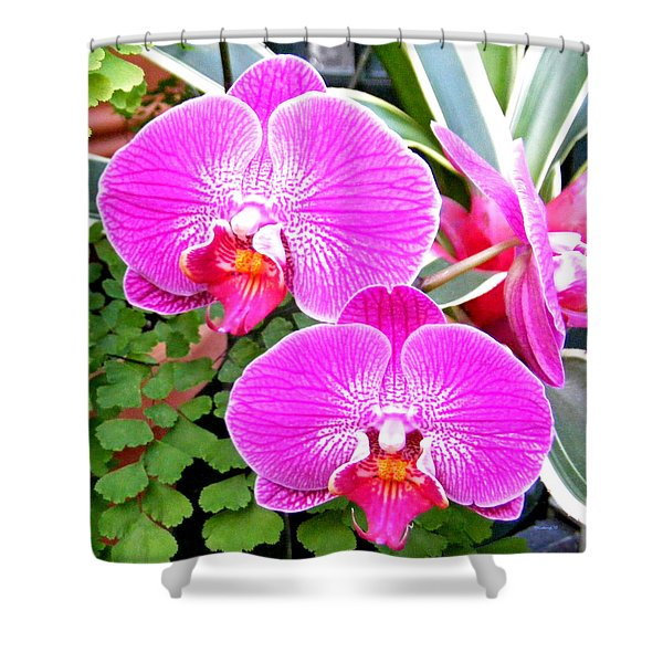 Two Orchids Shower Curtain