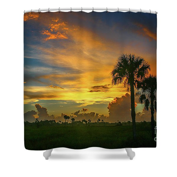 Shower Curtain featuring the photograph Two Palm Silhouette Sunrise by Tom Claud