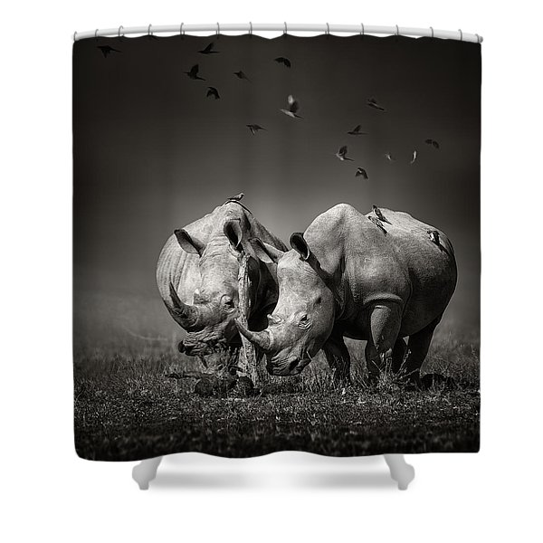Two Rhinoceros With Birds In Bw Shower Curtain
