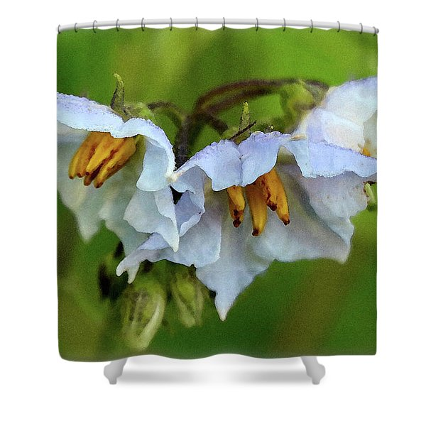 Two Rivers June 2017 Shower Curtain