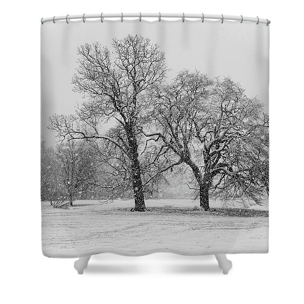Two Sister Trees Shower Curtain