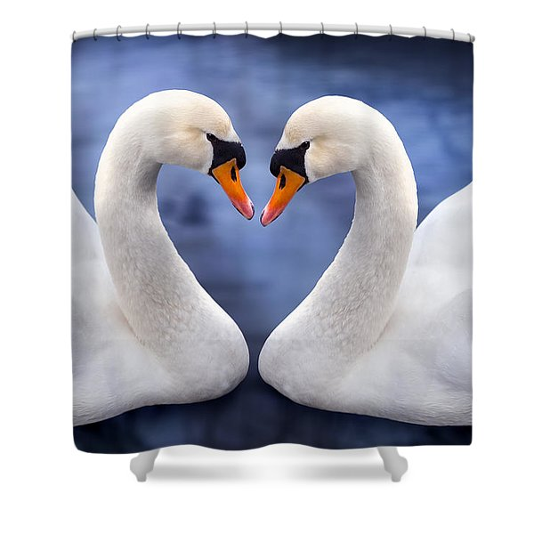 Two Swans Shower Curtain