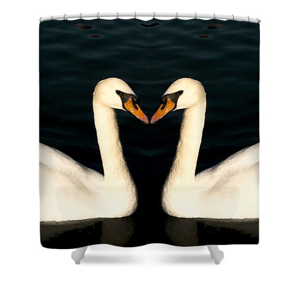 Two Symmetrical White Love Swans Shower Curtain