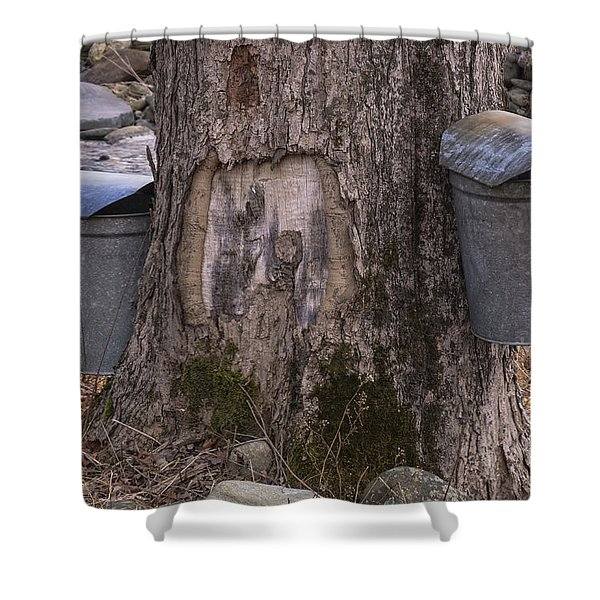 Shower Curtain featuring the photograph Two Syrup Buckets by Tom Singleton