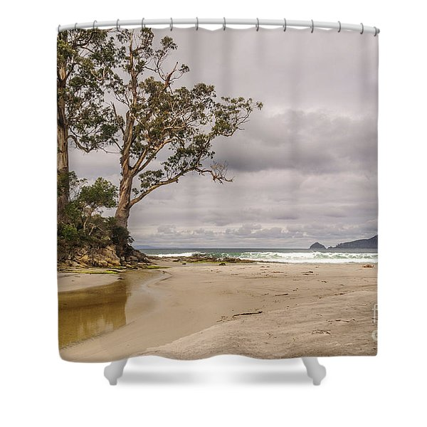 Two Tree Point Shower Curtain