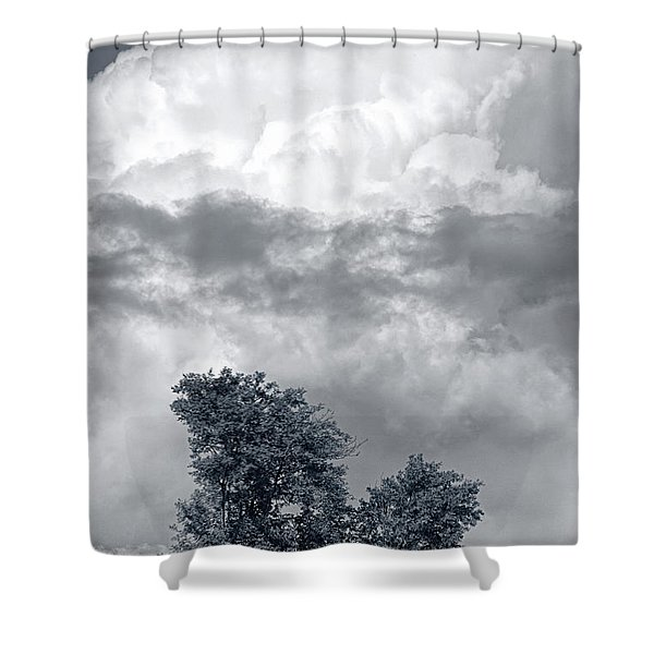 Two Trees #9249 Shower Curtain