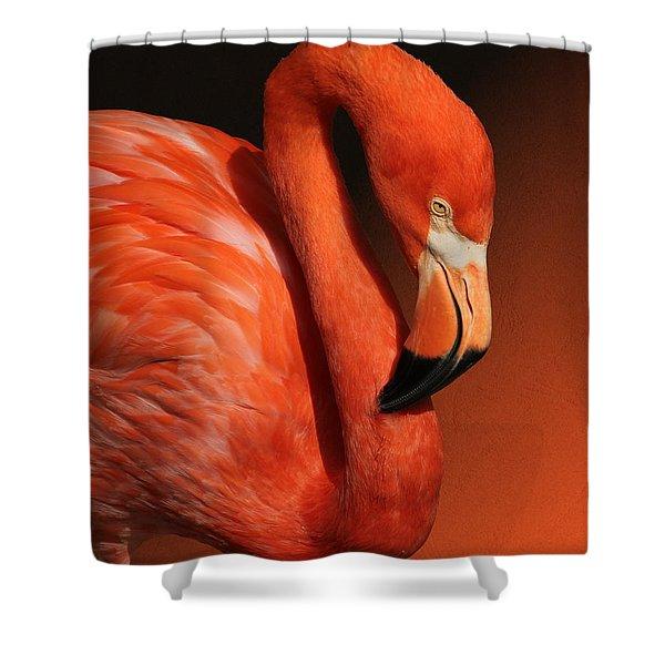 Ultimate Orange Shower Curtain