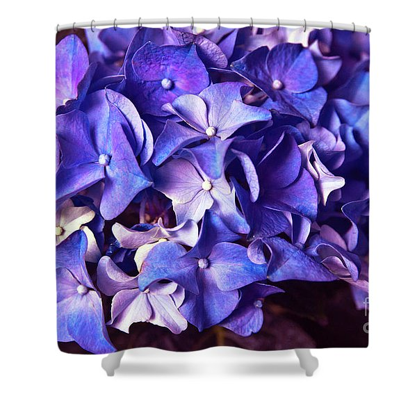 Shower Curtain featuring the photograph Ultra Violet Dance by Silva Wischeropp